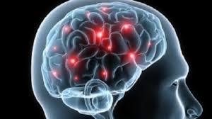 The Lifelong Brain Activity Prevents Dementia