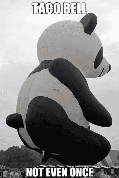 tako bell panda memes