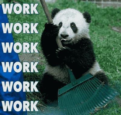 wark panda memes