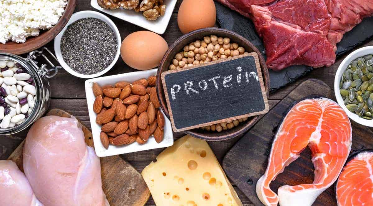A Comprehensive Guide to Understanding the Benefits of a Low Carb High Protein Diet