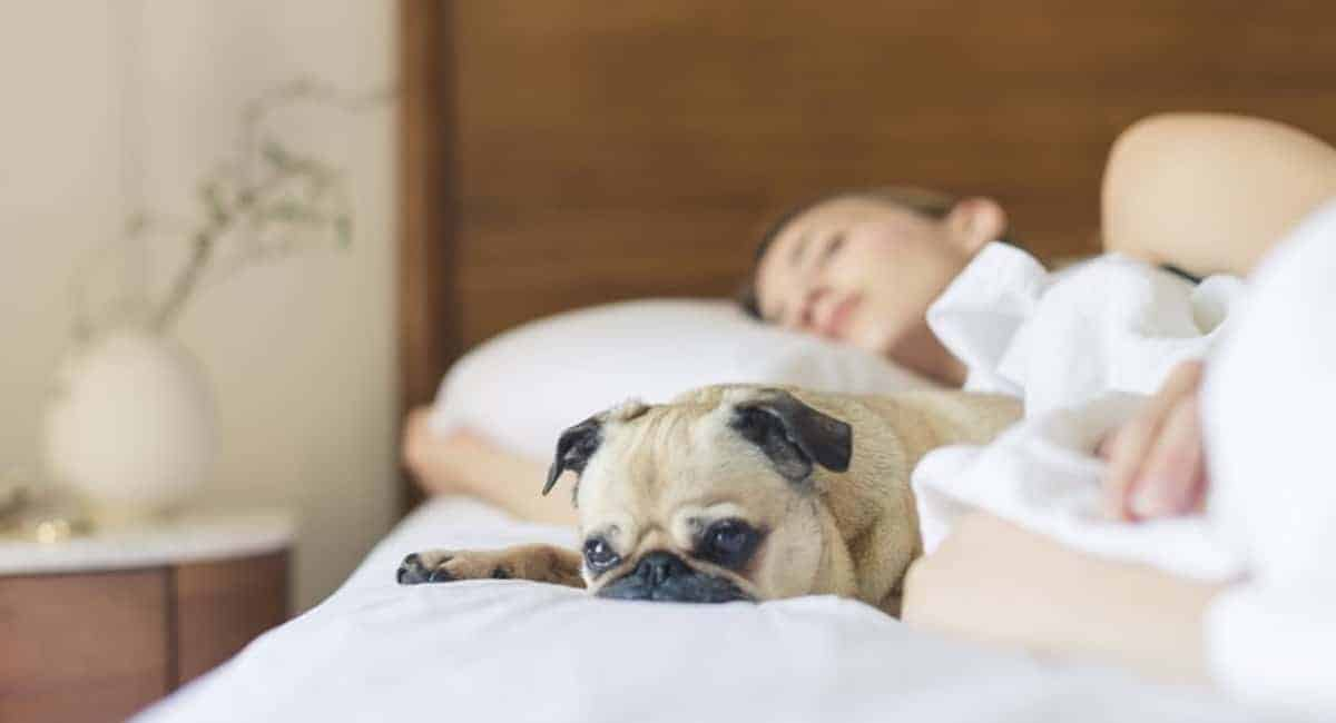 4 Actionable Tips for Improving Your Sleep Quality