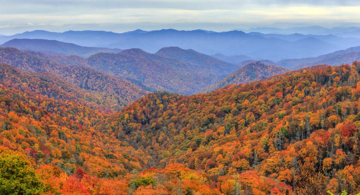 7 Reasons Why You Should Visit the Smoky Mountains this Summer