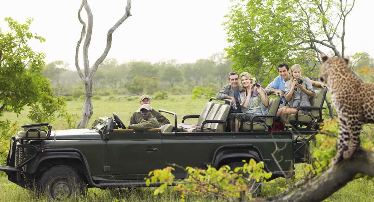 5 Key Reasons Why You Should Visit Kruger National Park