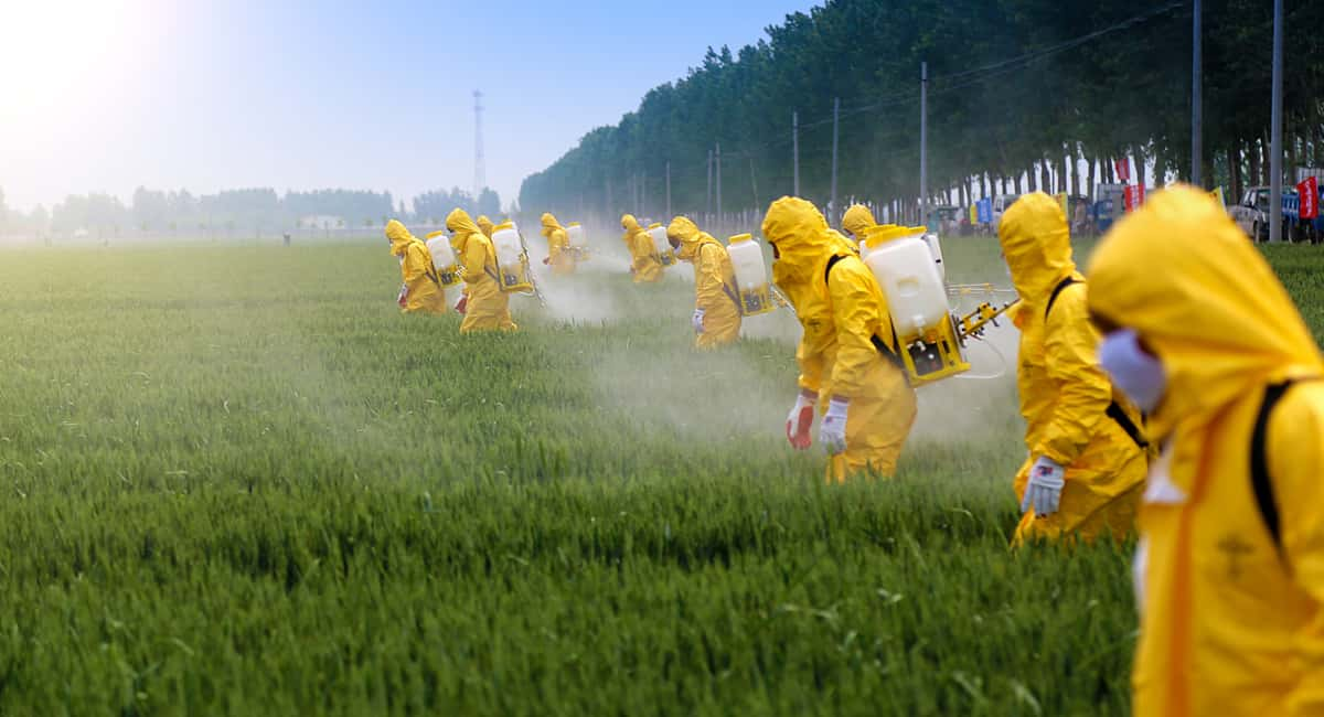 There Is WHAT in my food 10 Outrageous Facts About Pesticides That You Need to Know Now