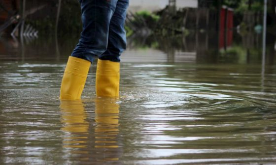 flood insurance cost