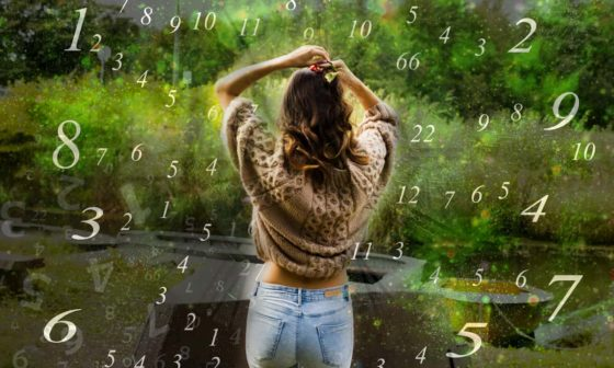 what is numerology