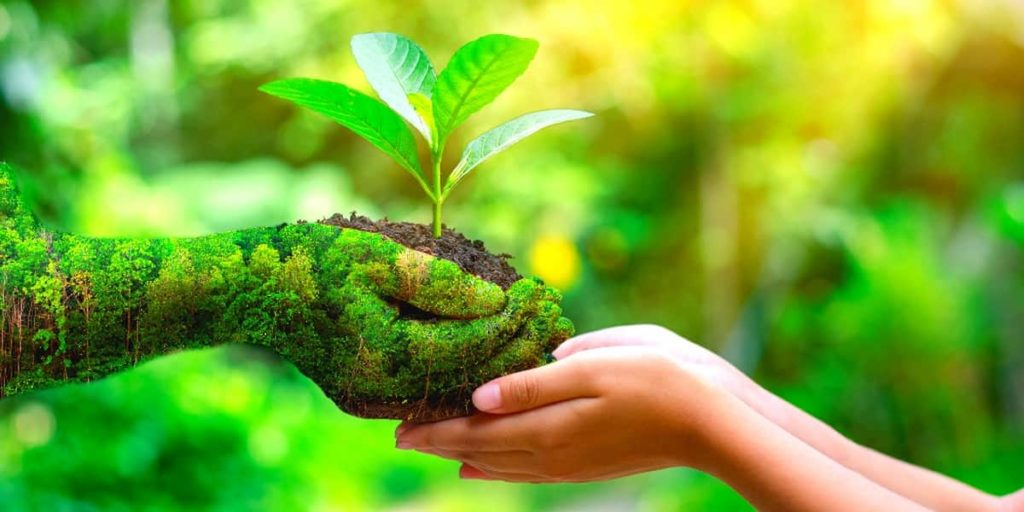 Want More Tips on How to Be More Eco Friendly