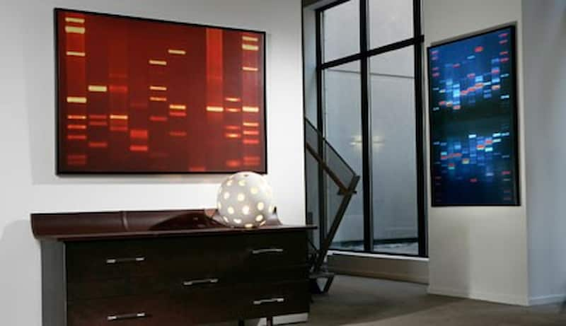 Customized Portrait Made Up of Your DNA