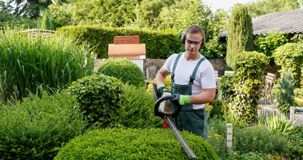 Do You Need a Professional Landscaper