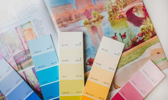 select colors for your interior walls