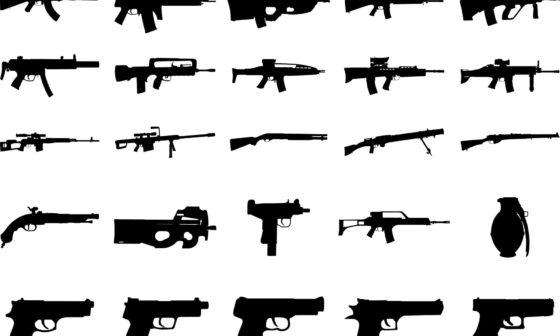 transfer gun ownership