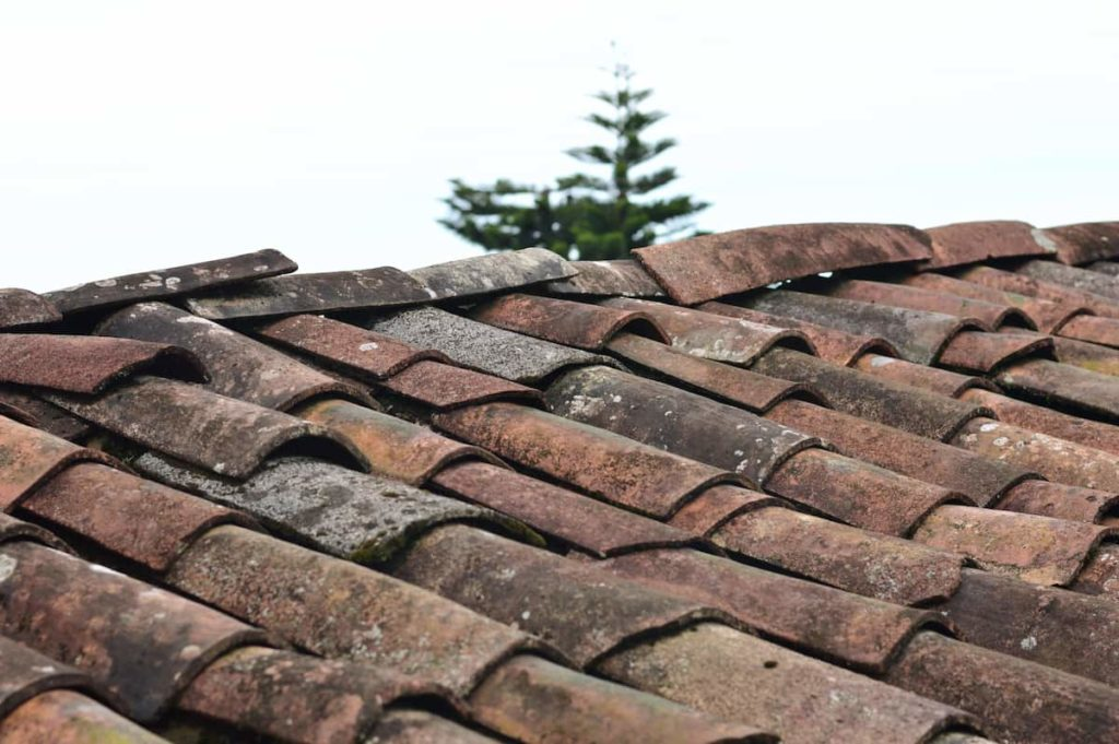 Common Types of Roof Damage You Might Be Dealing with