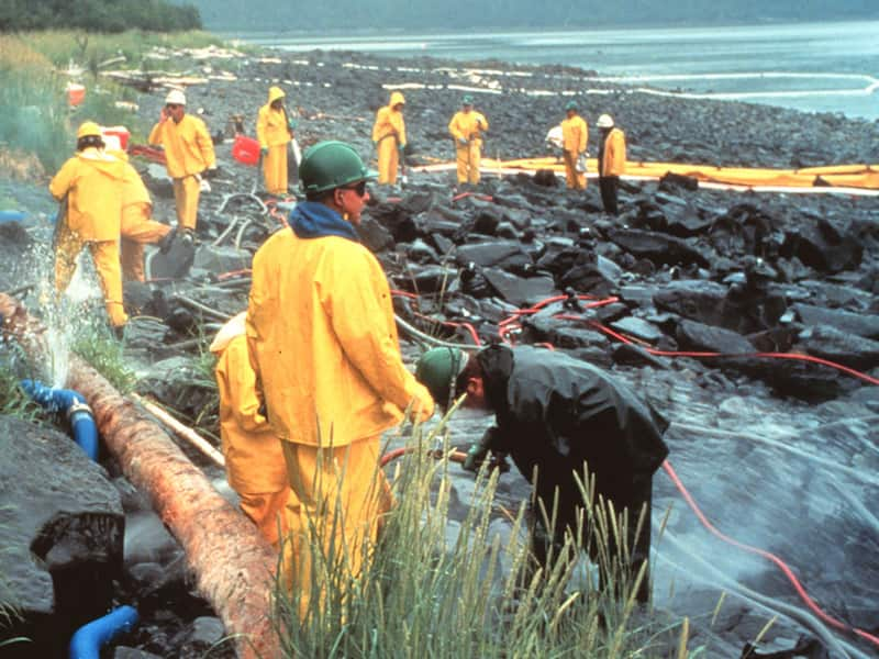The land oil spill cleanup kit