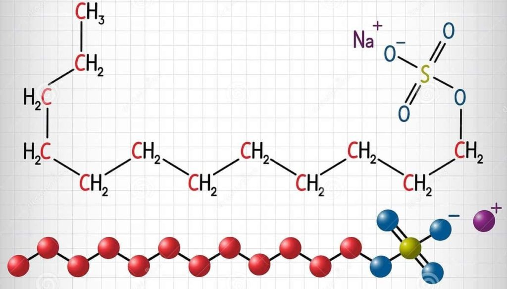 New Simulations Expose How Proteins Unfold With The Help Of Sodium Dodecyl Sulfate