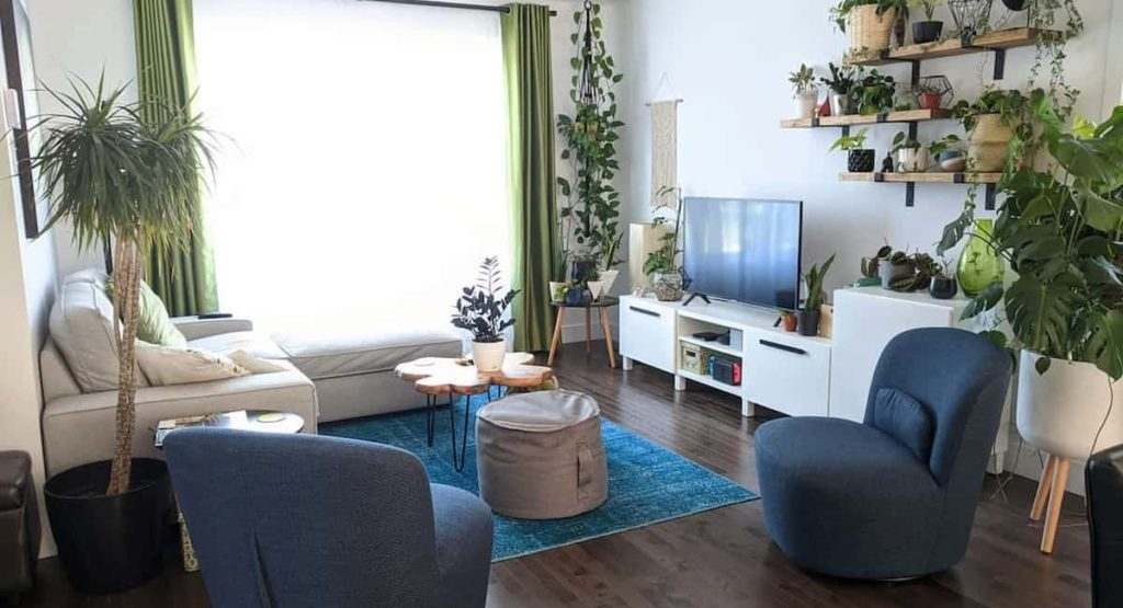 Add Houseplants To Your Home