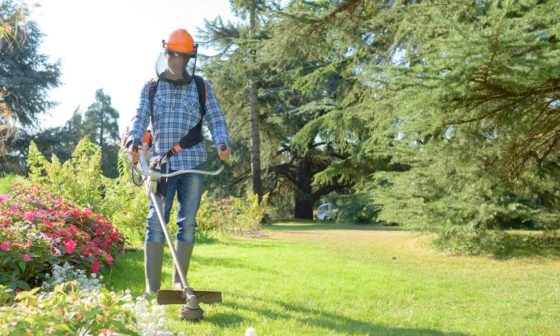 Types of Landscaping Jobs